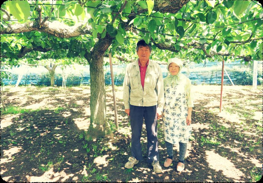 小川梨園のご夫婦